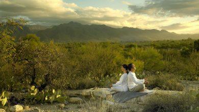 Photo of P-stress In Tucson – Spas
